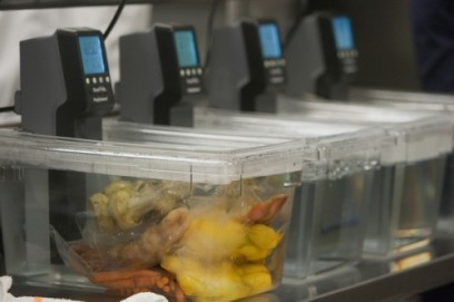 Sous vide equipment for low temperature cookery